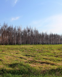 Экономика природопользования и ее характеристики