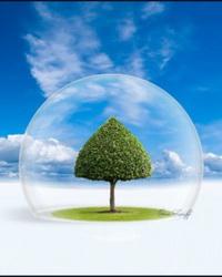 Экспертиза, аудит и принятие решений государственной экологической экспертизой