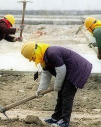 Элементы и формы организации труда