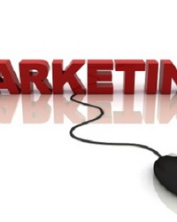 Разработка маркетинговых программ и сбытовой политики предприятия