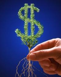 Регулирование международного движения капитала