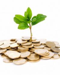 Смешанная экономика: частный сектор и экономическая роль государства