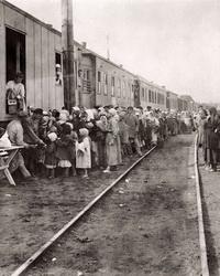 Становление налоговой политики в 1921-1923 гг.