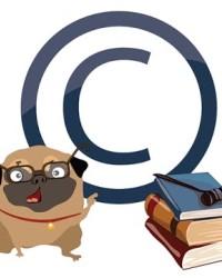 Авторское право 2019