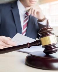 Деятельность адвоката в конституционном суде