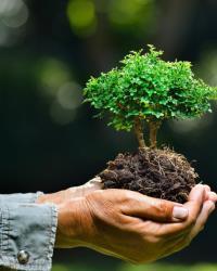 Деятельность по охране окружающей среды