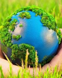 Экологическая роль