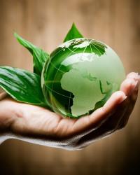 Экологический контроль 2017