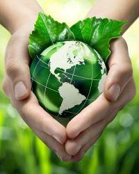 Экологическое развитие