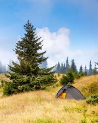 Экотуризм и альтернативы отдыха последних десятилетий