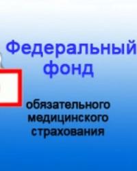 Фонды обязательного медицинского страхования в РФ