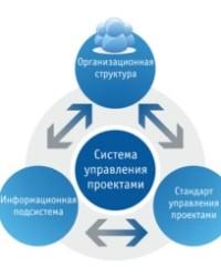 Информационная система компании