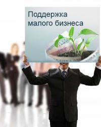 Инфраструктура поддержки малого предпринимательства