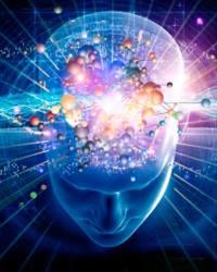 Интеллект - источник управления