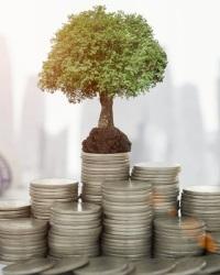 Инвестиционная деятельность 2019