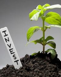 Инвестиционные проекты в сфере предпринимательства