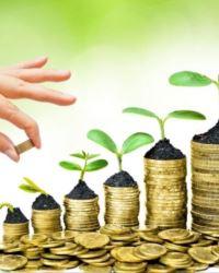 Как достичь прибыли от продвижения торговых марок