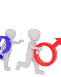 Конституционный принцип равноправия полов