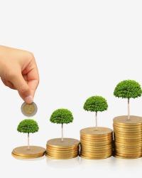 Менеджмент инновационного и инвестиционного процесса