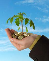 Меры финансовой господдержки бизнеса в 2020 году