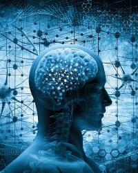 Мышление и деятельность