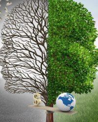 Надзор природопользования