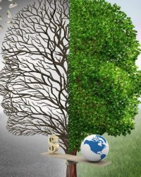 Нарушения в области природопользования и охраны окружающей среды