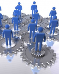 Новое общество организаций