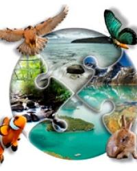 Объекты окружающей среды