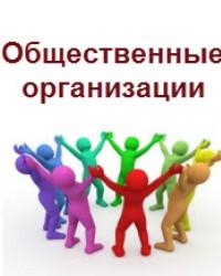 Общественная организация 2017