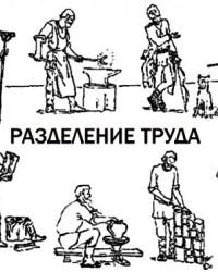 Общественное и географическое разделение труда