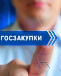 Организация государственных закупок в России