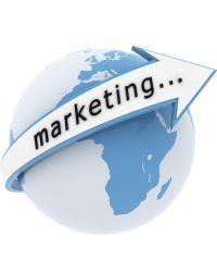 Организация службы маркетинга