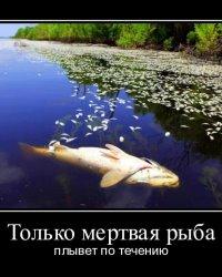 Плыть по течению, потонуть или принимать решения