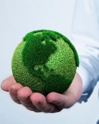 Понятие и система экологического права
