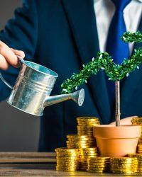 Предпринимательский капитал