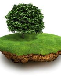 Рассмотрение дел при оспаривании решений о возмездном предоставлении земельных участков
