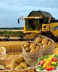 Регулирование деятельности агропромышленного комплекса