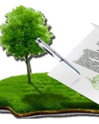 Реорганизация сельскохозяйственных предприятий. Права на землю