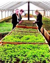Сельскохозяйственные кооперативы