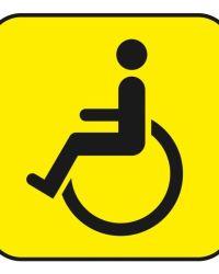 Социальный инвалид 2019