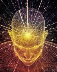 Сознание и его происхождение