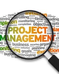 Субъекты, инструменты и стандарты управления проектами