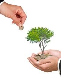 Субсидии для малого бизнеса в 2020 году