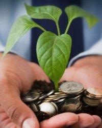Учет уставного капитала организации