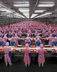 Учет затрат на производство и калькулирование себестоимости продукции