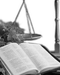 Уголовно-правовые принципы и принципы права