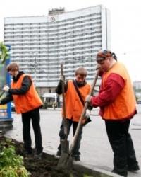 Управление озеленением городских территорий