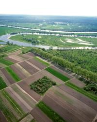 Управление землепользованием в населенных пунктах
