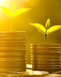 Внешнеэкономический сектор и финансовые институты